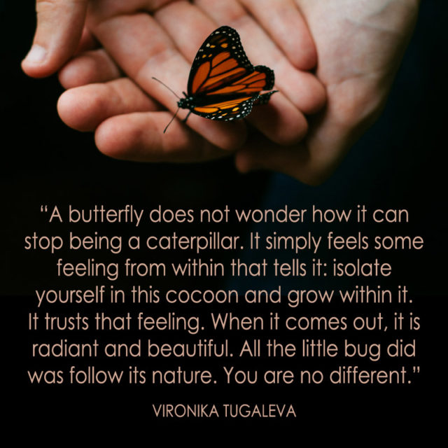 A butterfly does not wonder how it can stop being a caterpillar. It simply feels some feeling from within that tells it: isolate yourself in this cocoon and grow within it. It trusts that feeling. When it comes out, it is radiant and beautiful. All the little bug did was follow its nature. You are no different. Quote by Vironika Tugaleva.