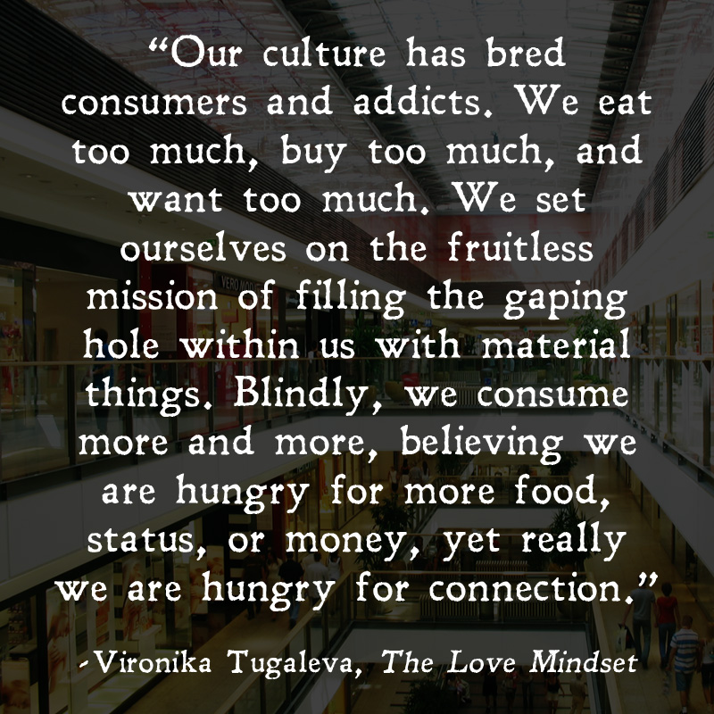 Quotes From The Love Mindset Vironika Tugaleva